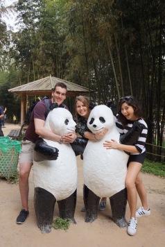 Panda, Panda, Panda